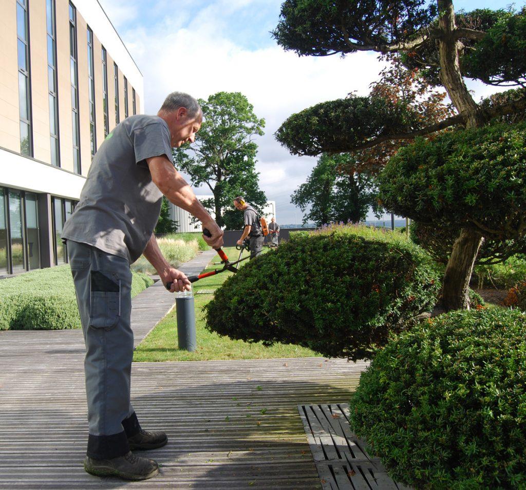JPC grounds maintenance